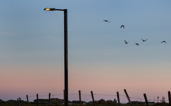 The Soluxio solar light pole is installed and up-and-running within 45 minutes
